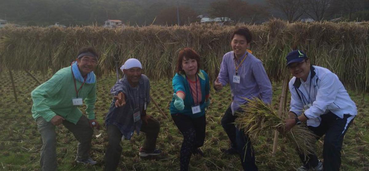 伊豆松崎とんび農園