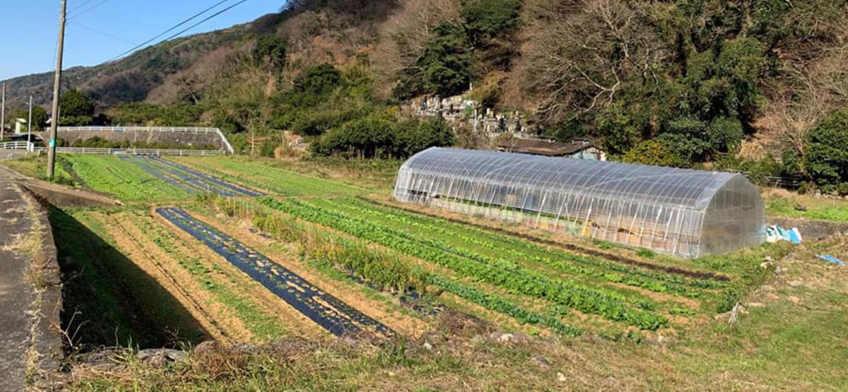 実季楽農園